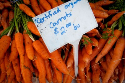 Carrots at the Phinney farmer's market. (Photo by Jason Walsh )