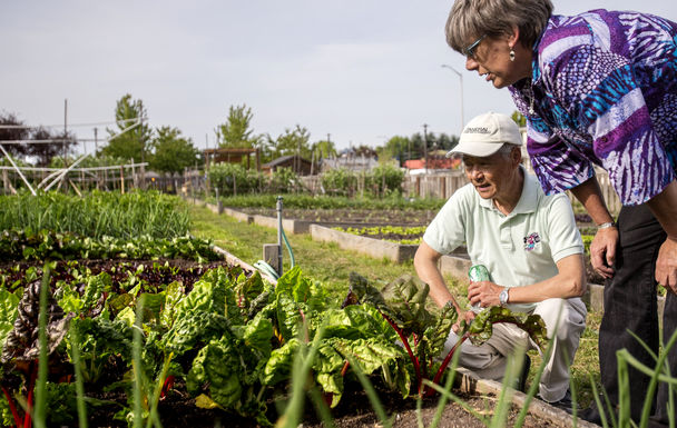 Garden coordinator Julie Bryan talks with gardener Kim Ball Der about the vegetables he and others are growing at the New Holly development in Southeast Seattle. (DEAN RUTZ/The Seattle Times)