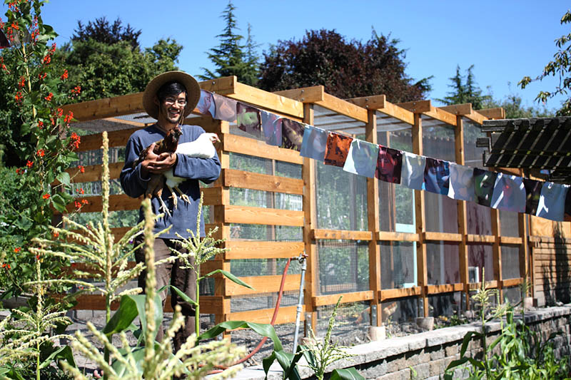 Jonathan Chen shows off some hens at the Danny Woo Garden in the International District. (Photo courtesy InterIm CDA)