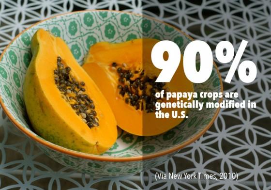 GMO PhotoFacts_2