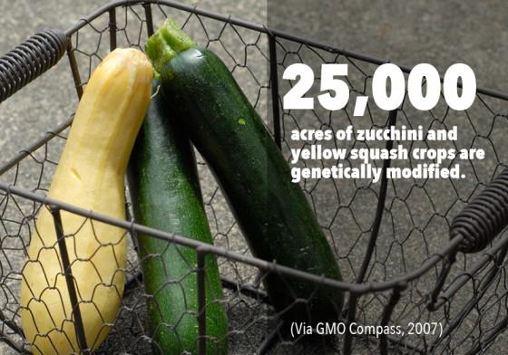 GMO PhotoFacts_3