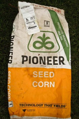A bag of corn seed with patented genes that make it herbicide resistant, so farmers can spray chemicals that kill weeds without killing their crops. (Photo by Orin Hargraves )