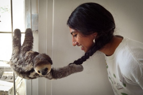 Conservationist and children's book author, Sharanya Sarathy, 17, spent part of her summer at a sloth rehabilitation center in Suriname. (Photo by Priya Sarathy)