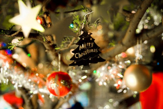 """Christmas decorations on a camel thorn tree in South Africa. (Photo from Flickr by <a href=""""http://www.flickr.com/photos/jjay69/"""">Jason Jones</a>)"""