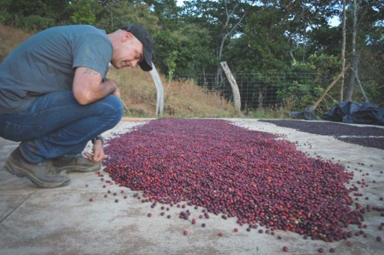 "Todd Carmichael inspects a crop of red fruit with coffee bean seeds in Mexico, in a still from the season premiere of ""Dangerous Grounds."" (Photo courtesy Travel Channel)"