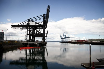 Cranes at the Port of Tacoma's APM and Olympic Container Terminal's. 1278 ships called at the Port last year, carrying almost $50 billion in international trade. (Photo by Alex Stonehill