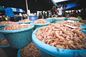 Shrimp for sale at a fish market in Thailand, the largest exporter of shrimp in the world. (Photo by EJF)