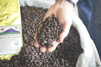 Lee Robinson shows off freshly roasted beans from the Ometepe Island in Nicaragua. (Photo by Hannah Myrick)