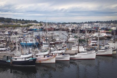 Fishing boats moored at Fishermen's Terminal in Ballard. (Photo by Lael Henterly)