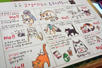 A rule card displayed at the Cat Attic cat café in Korea. Cafes commonly employ rules such as not picking up sleeping or visibly agitated cats. (Photo courtesy of Karla Orozco)