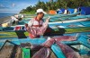 Tuna loins are offloaded at Waepure, one of the Indonesian fishing villages involved in the new Fair Trade tuna program. (Photo by Paul Hilton / Fair Trade USA)