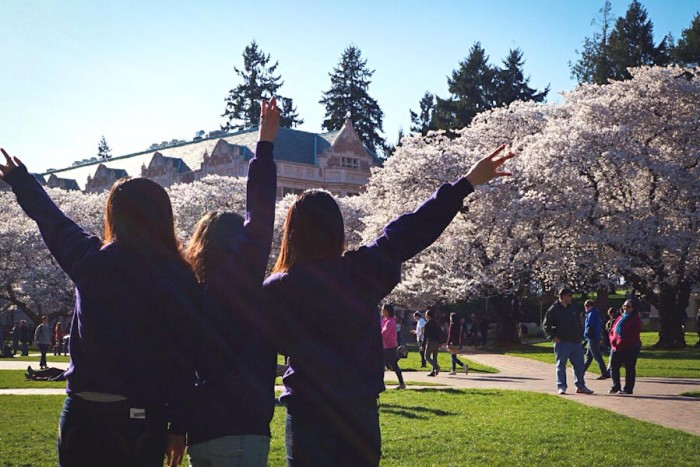 Just because you're graduating this Spring, doesn't mean you have to leave the beautiful Pacific Northwest. (Photo by Yue Ching Yeung)