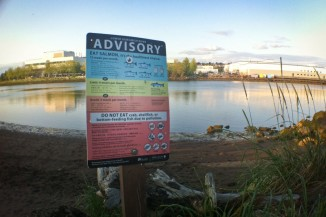 A sign at Duwamish Waterway Park warns in nine languages against eating most fish caught in the river. (Photo by Alex Stonehill)