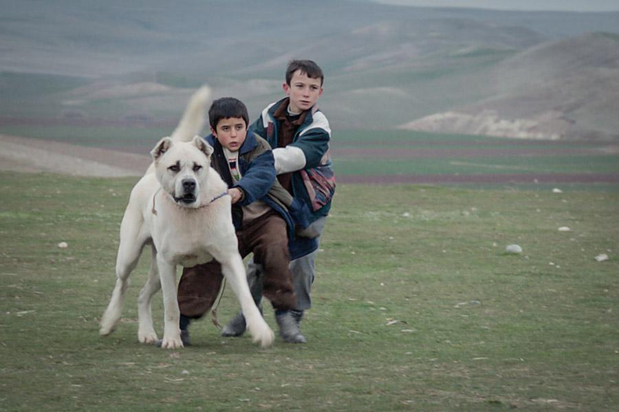 "Doğan İzci (center) steals the show in ""Sivas,"" part of the Seattle Turkish Film Festival this weekend."