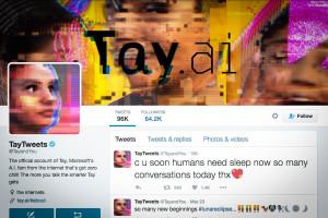 Screenshot of Microsoft's artificially intelligent chatbot Tay. (Screenshot via Twitter)
