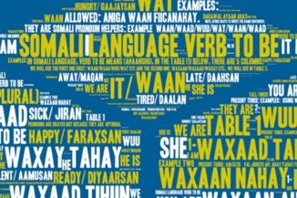 A montage of words written in Somali and English, seen on the onecityproject.org website.