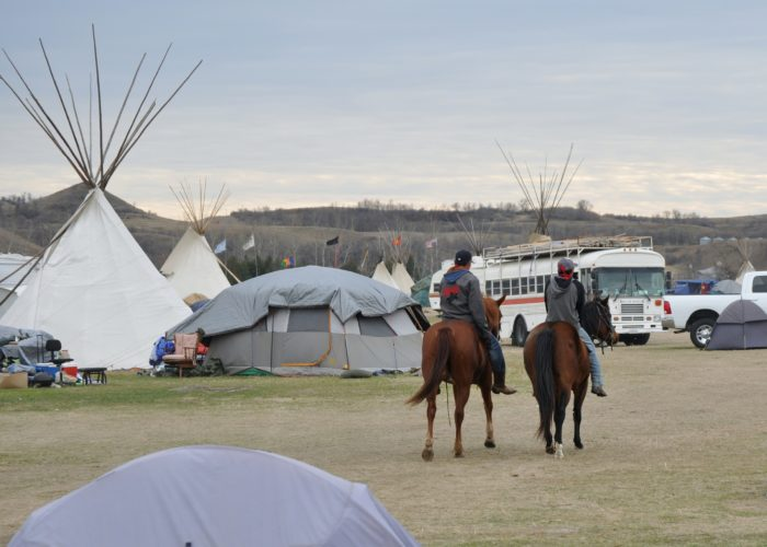 Horse-riders at the camp at Standing Rock camp go wherever they are needed. But when the protests start and police are engaged, even animals have become victims.