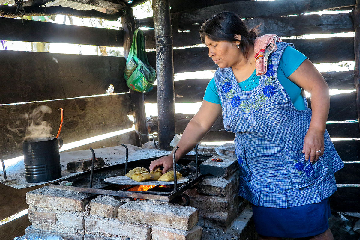 Native Mexican corn growers advocate local crops over global